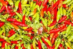 Grüner und roter Paprika. Lizenzfreies Stockfoto