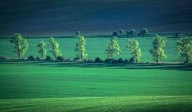 Grüner und tirquoise Frühlingsfeld-Zusammenfassungshintergrund lizenzfreies stockbild