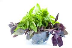 Grüner und violetter Basilikum in der Schüssel Stockbilder