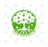 Grüner Vektor-Apfelbaum mit Wurzeln stock abbildung