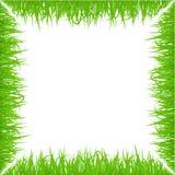 Grüner Vorfrühlingsgrasrahmen auf weißem Hintergrund Realistische eco Naturgrenze Lizenzfreie Stockbilder