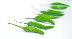 Grüner würziger Chili Pepper Stockbild