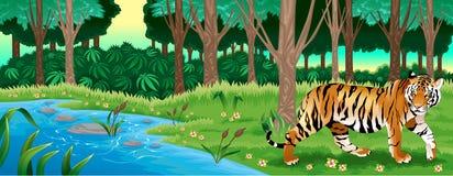 Grüner Wald mit einem Tiger Lizenzfreies Stockbild