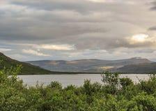 Grüner Wald nahe bei breitem See und Berge auf dem Hintergrund Westfjords von Island, Europa lizenzfreies stockfoto