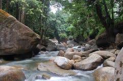 Grüner Wald u. Fluss von Indonesien Lizenzfreie Stockbilder