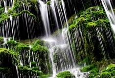 Grüner Wasserfall? Stockfotos