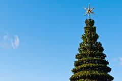 Grüner Weihnachtsbaum an einem sonnigen Wintertag Lizenzfreies Stockfoto