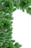Grüner Weihnachtsbaum lokalisiert auf Weiß Stockbild