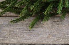 Grüner Weihnachtsbaumast auf hölzernem Hintergrund Stockbild
