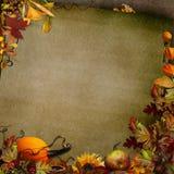 Grüner Weinlesehintergrund mit Herbstlaub und Kürbis Stockbilder