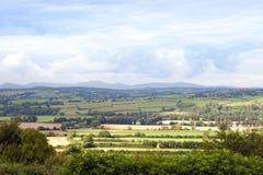 Grünes üppiges irisches Ackerland Lizenzfreie Stockbilder