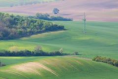 Grünes Ackerland der Landschaft Lizenzfreie Stockfotografie