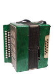 Grünes Akkordeon stockfotos