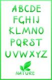 Grünes Alphabet. Vektorset Lizenzfreie Stockfotografie