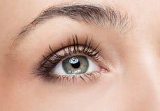 Grünes Auge der Frau Lizenzfreie Stockfotografie