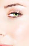 Grünes Auge einer Frau lizenzfreie stockbilder