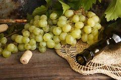 Grünes Bündel der Traube mit Weinflasche Lizenzfreie Stockfotografie