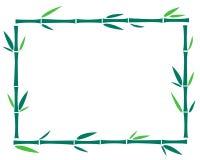 Grünes Bambusrahmenmuster Stockfoto