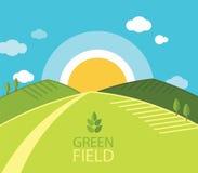 Grünes Bauernhoffeld Stockfotos