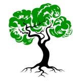 Grünes Baumschattenbild mit Wurzeln Baumikone stock abbildung
