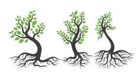 Grünes Baumzeichen Lizenzfreies Stockbild