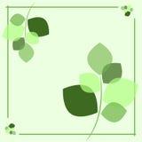 Grünes Blatt Lizenzfreie Abbildung