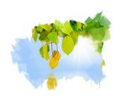 Grünes Blatt auf einem Baum Lizenzfreies Stockbild