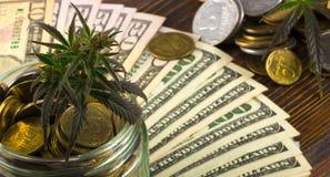 Grünes Blatt des Hanfs, Marihuana, Ganja, Hanf auf einem Bill 100 US-Dollars Die goldene Taste oder Erreichen für den Himmel zum  Lizenzfreies Stockfoto
