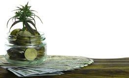 Grünes Blatt des Hanfs, Marihuana, Ganja, Hanf auf einem Bill 100 US-Dollars Die goldene Taste oder Erreichen für den Himmel zum  Lizenzfreie Stockfotos