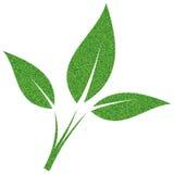 Grünes Blatt gemalt mit Kieseln Stockbild