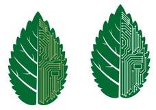 Grünes Blatt mit Computer- und Motherboardelementen Stockfoto