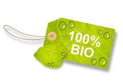 Grünes Blatt-Tag, beschriften 100% Bio - auf Weiß Lizenzfreie Stockbilder