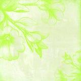 Grünes Blumen Lizenzfreie Stockbilder