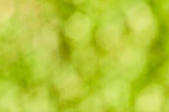 Grünes bokeh Lizenzfreies Stockbild
