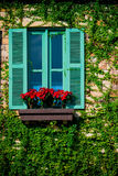Grünes buntes hölzernes Fenster Stockbilder
