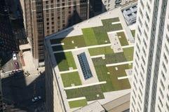 Grünes Dach Stockfoto