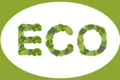 Grünes eco Lizenzfreies Stockbild
