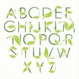 Grünes eco Alphabet mit Blättern Stockfotografie