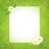 Grünes eco Feld stock abbildung