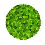Grünes eco freundlicher Kennsatz von den grünen Blättern. Vektor Lizenzfreie Stockfotografie