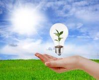 Grünes Energiekonzept Stockfotos