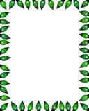 Grünes Facettenleuchte-Randfeld Stockbilder
