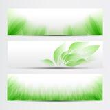 Grünes Fahnenset Stockbild