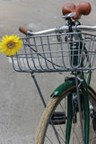 Grünes Fahrrad mit gelber Blume Lizenzfreie Stockbilder