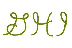 Grünes Faserseil G, H, I Lizenzfreie Stockfotos
