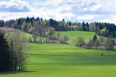 Grünes Feld Lizenzfreies Stockbild