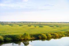 Grünes Feld auf der Flussbank Stockfotos
