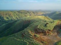 Grünes Feld auf Sonnenuntergangzeit Lizenzfreies Stockbild