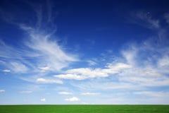 Grünes Feld, blaue Himmel, weiße Wolken im Frühjahr lizenzfreie stockfotos