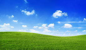 Grünes Feld blauer Himmel-Umwelt-Unendlichkeits-Konzept Lizenzfreie Stockfotografie